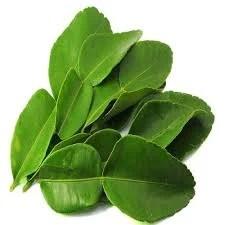 Kaffir Lime Leaves - Onlinerecipe.website
