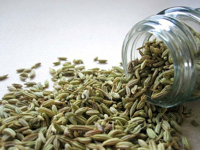 Fennel Seeds - TheRecipe.Website