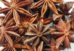 Star Anise - TheRecipe.Website
