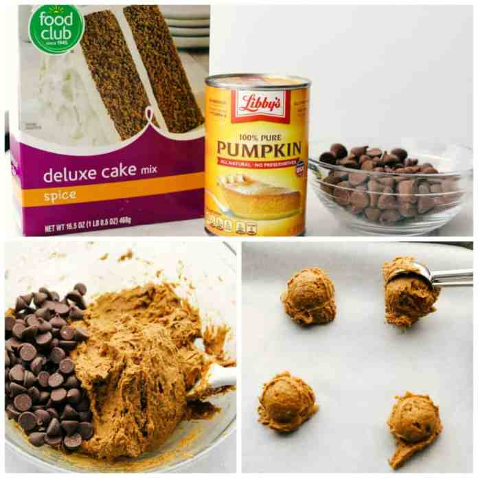 How to make 3 ingredient Pumpkin spiced Chocolate Chip cookies.