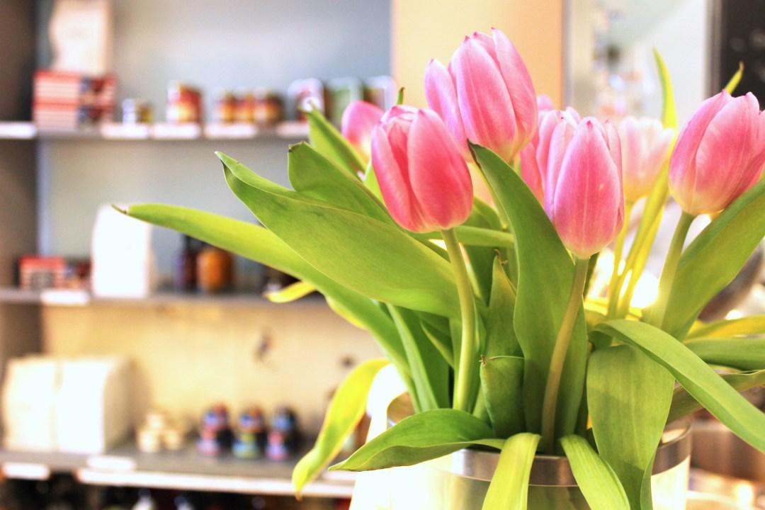Midi - Tulpen