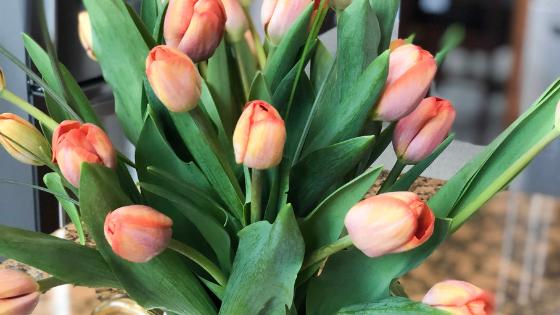 Sales & Deals Mother's Day Weekend