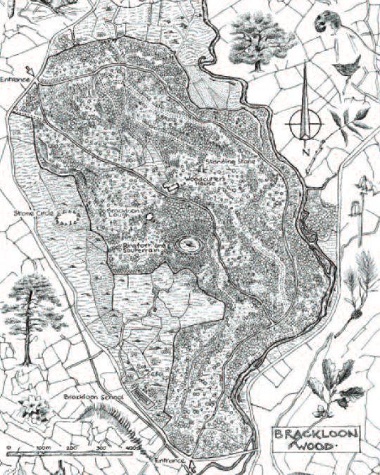 brackloon wood map