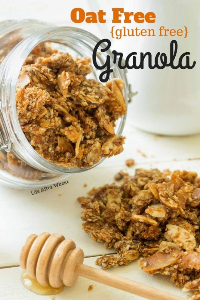 Finally, an oat free granola that actually tastes like granola! Use this crunchy, subtly sweet granola as a breakfast cereal, yogurt topper, or on-the-go snack.