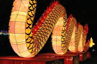 Light-Up Dragon Body