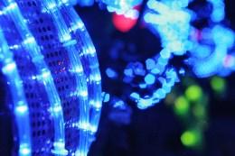 Detail of Blue Light-Up Flower