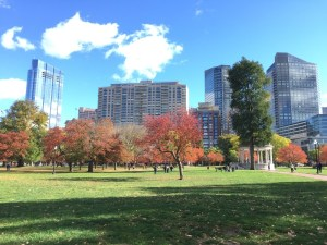 Boston Commons Skyline