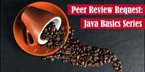 Peer Review Request Java Basics Series Featured Image