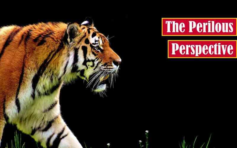 The Perilous Perspective Premium Featured Image
