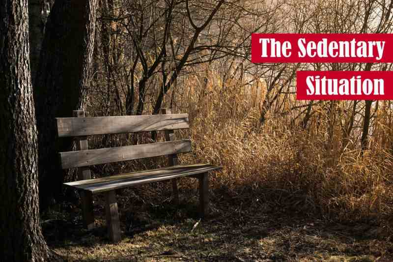 The Sedentary Situation Featured Image