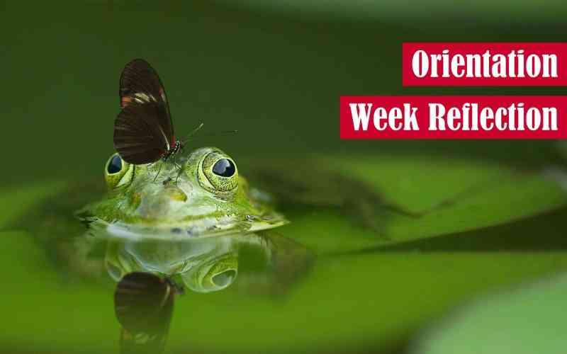 Orientation Week Reflection Featured Image