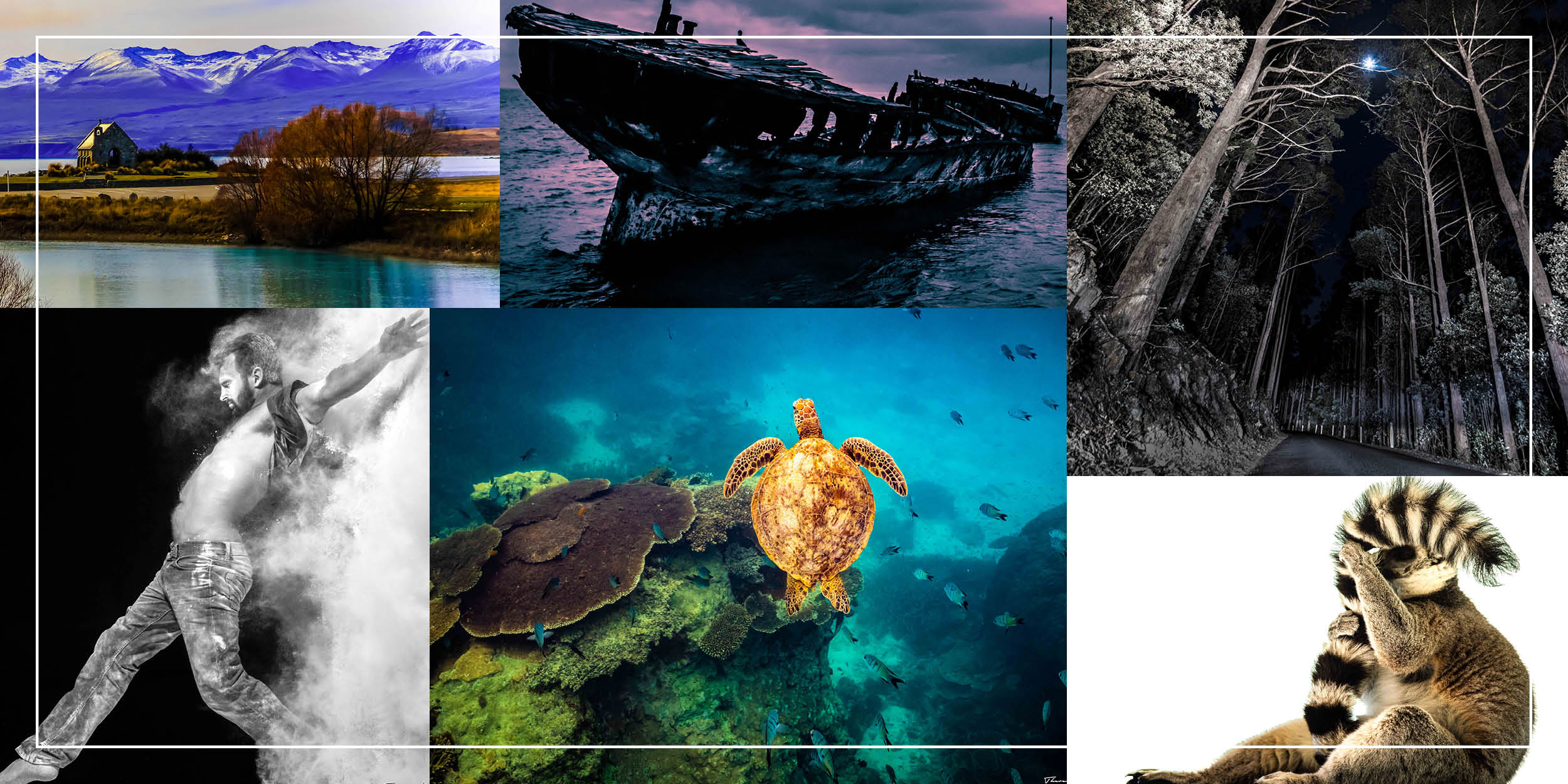 Various images: Lake Tekapo, man stepping forward with smoke behind, turtle, abandoned shipwreck, forest with moon, ring-tail lemur
