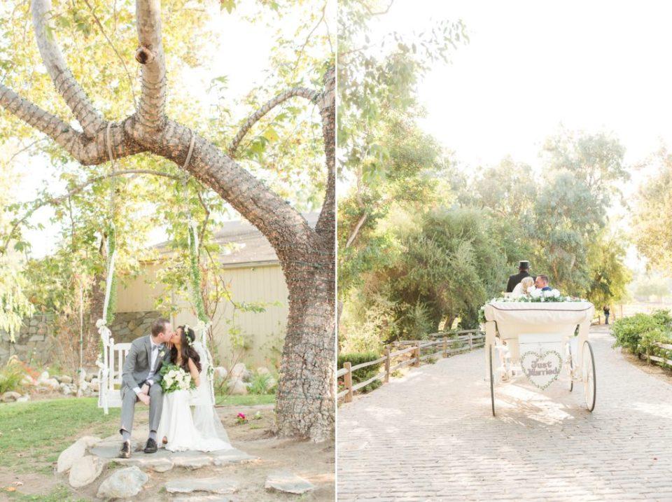 Colorado- wedding- photographer- theresa- bridget - photography