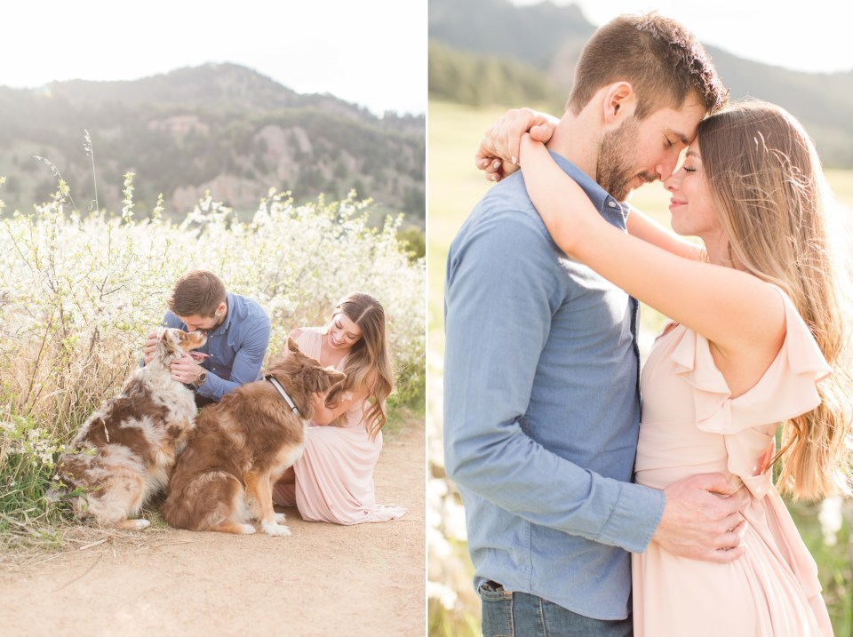 Australian Shepherd puppies at Engagement session at chautauqua park in Boulder Colorado. Colorado Wedding Photographer