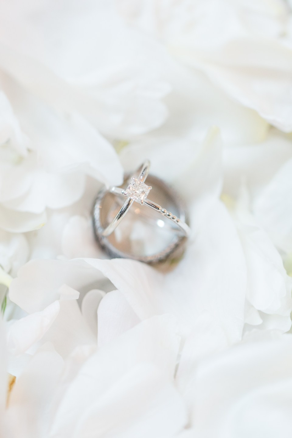 Solitair engagement ring sitting on white flower pedals