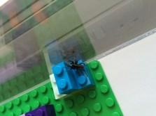 Steppy Lego