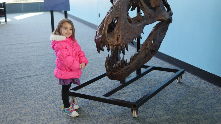 Children of all ages discover how exciting science can be at the Baltimore Science Center.