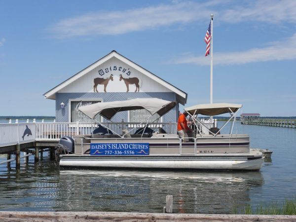 Daisey's Island Cruise to see the waters of Chincoteague Island