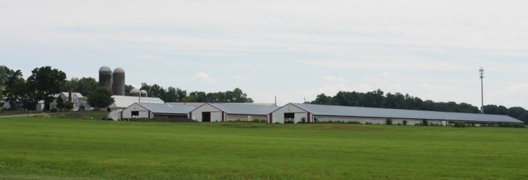 Rocky Point Creamery sells local dairy and beef in Frederick County, Maryland