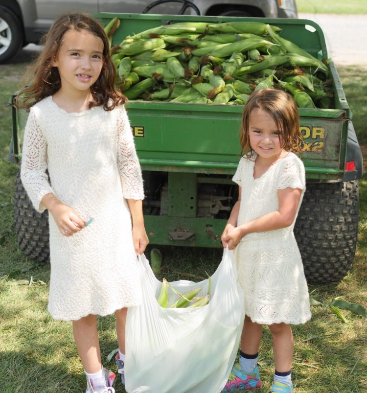 Tuscarora Farms in Frederick, Maryland offers fresh corn. - Theresa's Reviews