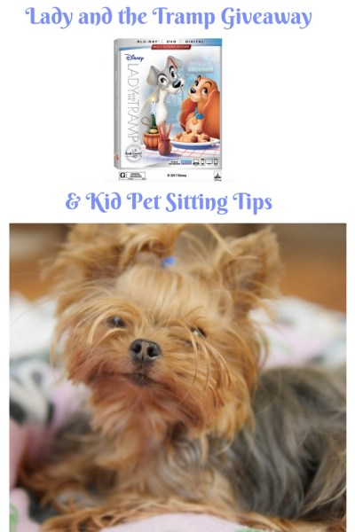 Pin this image to come back later for the 'Lady and the Tramp' Giveaway & Kid Pet Sitting Tips from Theresa's Reviews and The Sammie and Georgie Show!