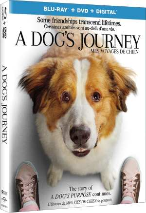 'A Dog's Journey' Continues the Heartwarming Story of Bailey (& Blu-ray Giveaway!)