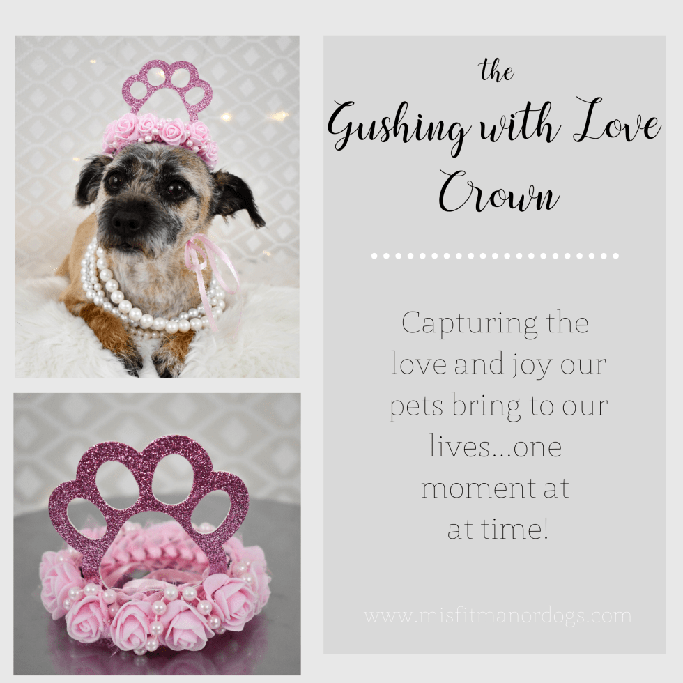 Dog Crown, Dog Birthday Hat, Barkday Party, Misfit Manor Shop