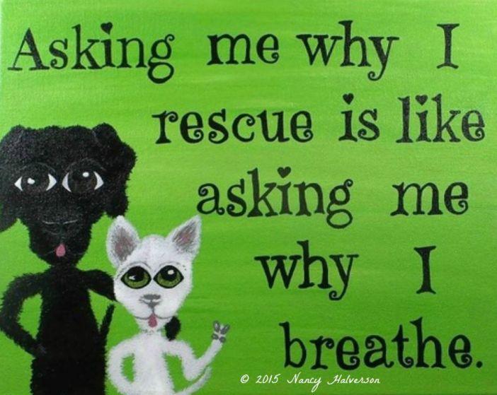Pet Rescue Art
