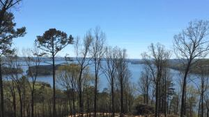 "<a href=""https://thereserveatlakeguntersville.com/homesites/waterview-lots/"">Water View Lots</a>"