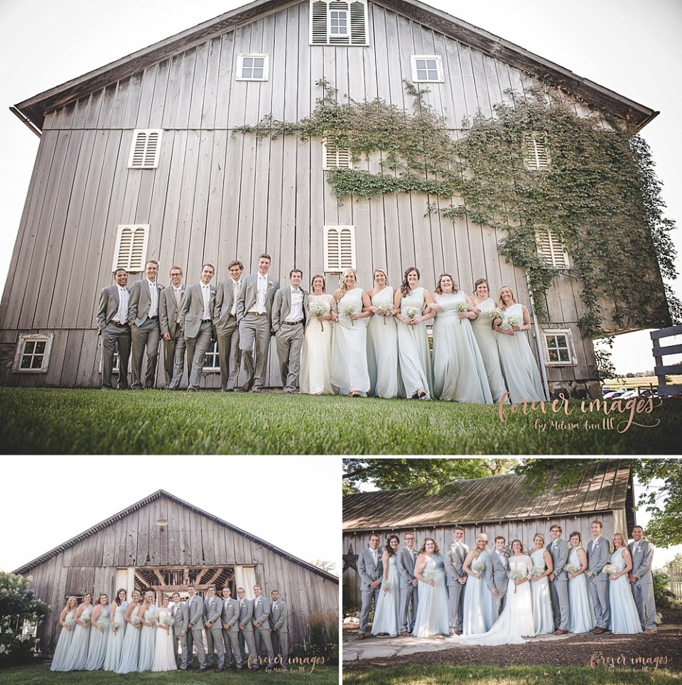 pale blue and gray wedding party