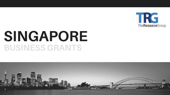 4 Singapore Business Grants That All SMEs Should Know