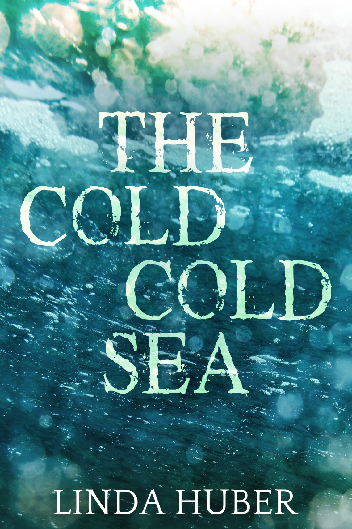 The Cold Cold Sea | Linda Huber | Book Cover