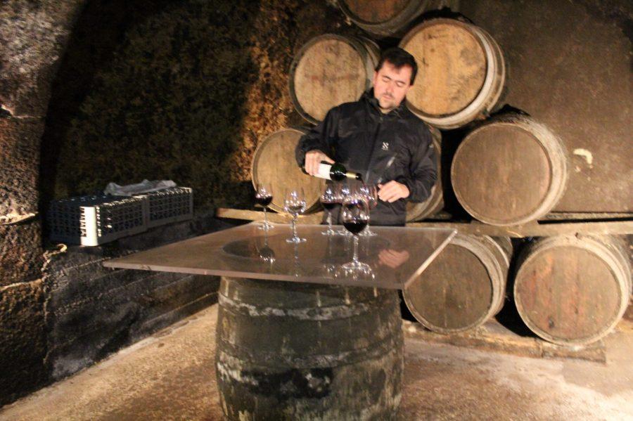 Tasting - Laguardia WIne Cellar - Bodegas Carlos San Pedro Perez de Vinaspre