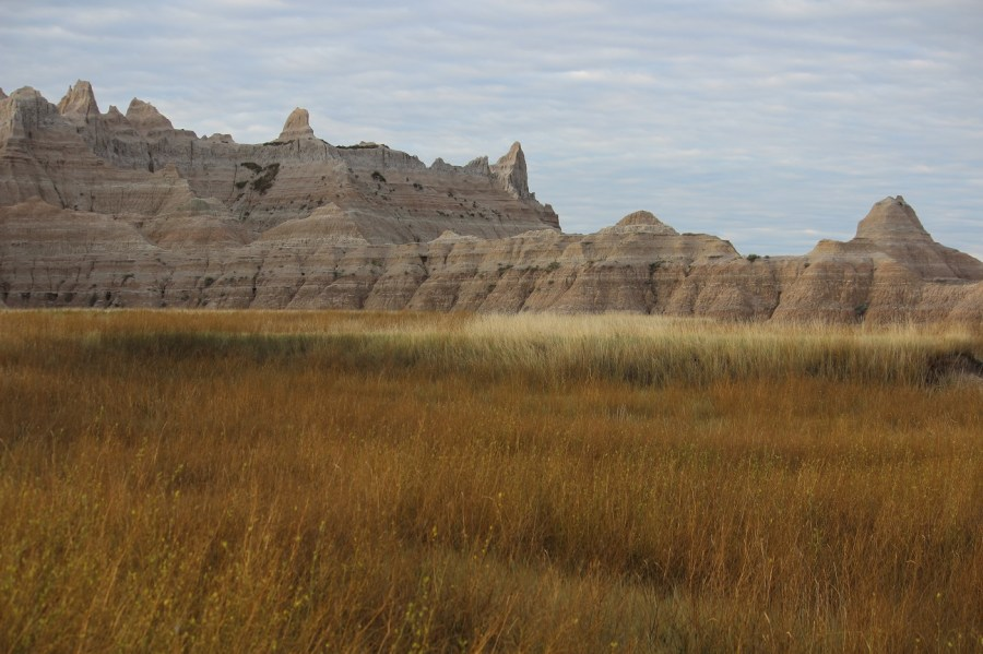 Badlands Prairie