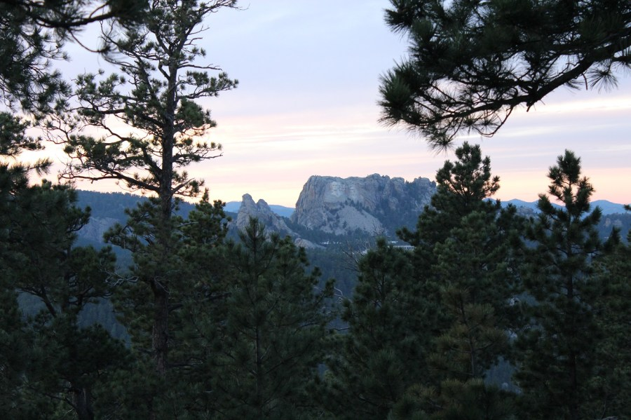 Mount Rushmore Framed By Trees