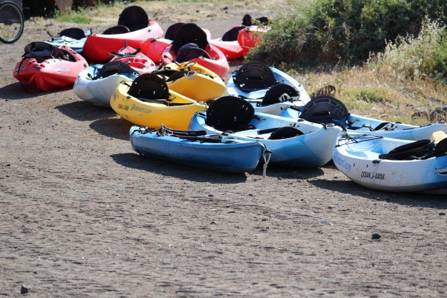 Scorpion Bay Kayaks and Camp