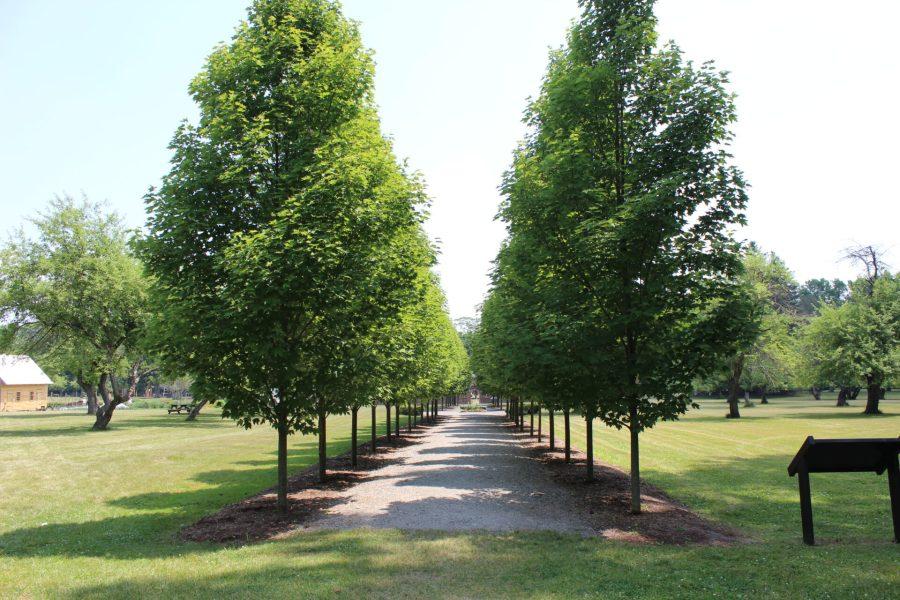 Fort Ticonderoga gardens