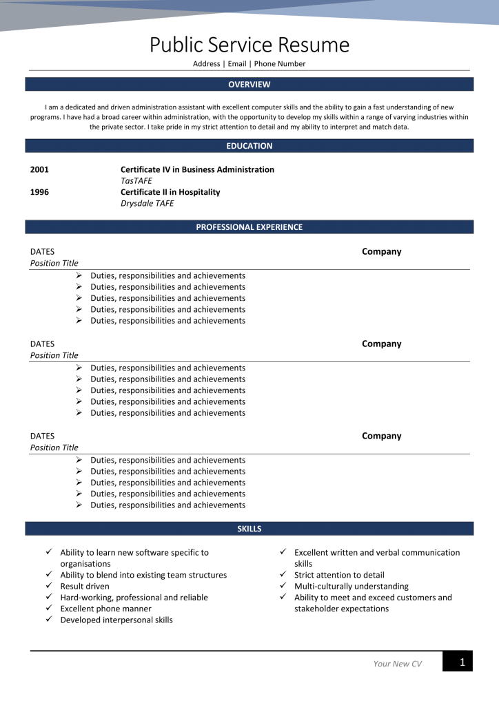 public service professional resume writing example