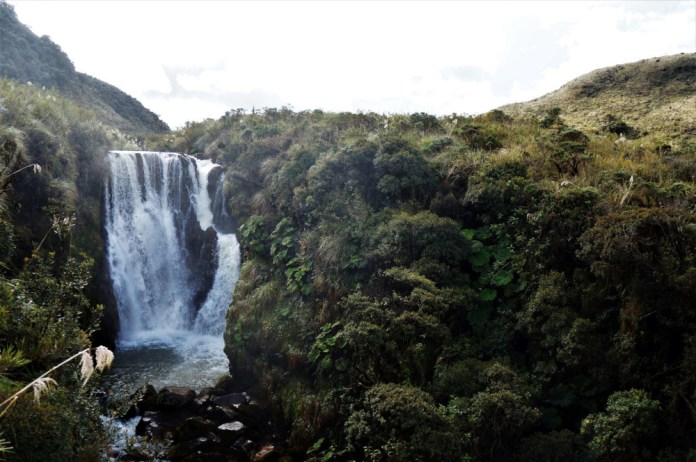 Coconucos Páramo. Cauca, Colombia. Photo by D.H. Rasolt.