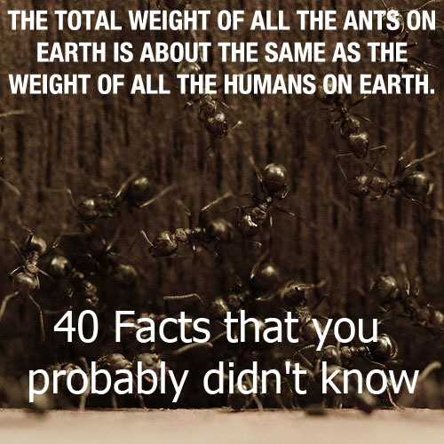40 Facts that you probably didn't know