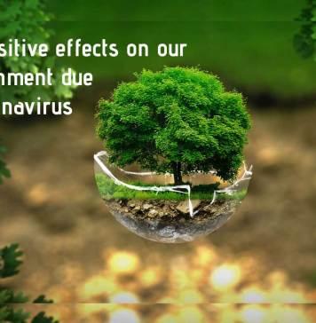 impact of coronavirus on environment