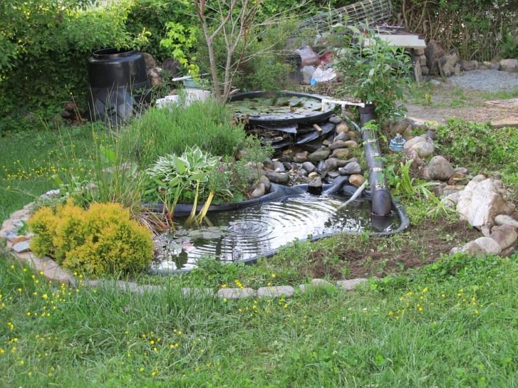 backyard artificial pond