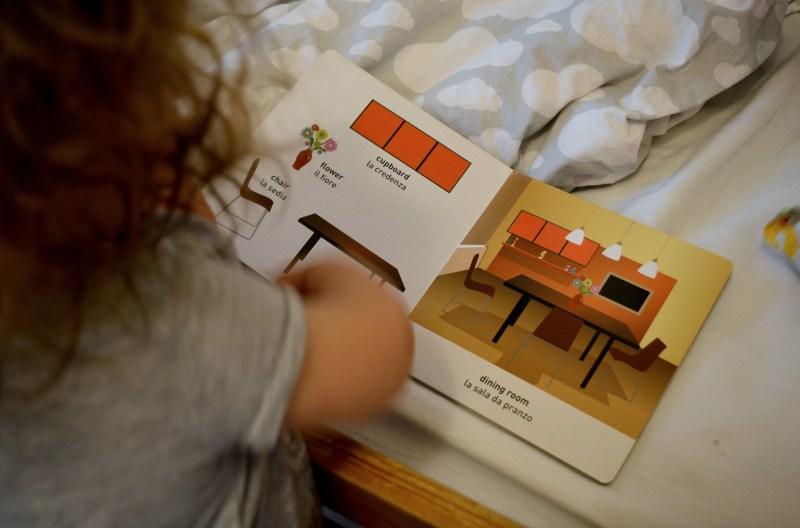 Toddler reading bilingual book