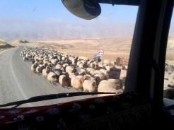 Local traffic around Hasankeyf