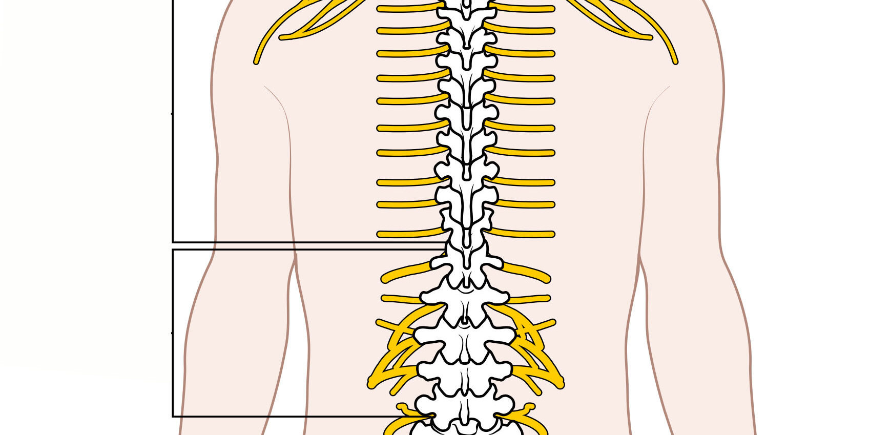 What To Know About Spinal Cord Stimulation
