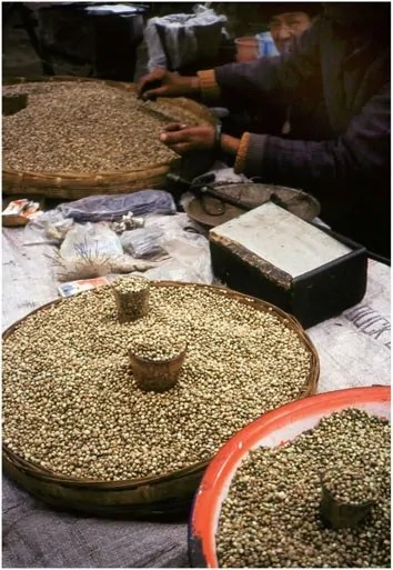 Hempseed sold on the streets even now in China, where a billion people still eat it weekly just as their ancestors have for millennia. Photo by R.C. Clarke.