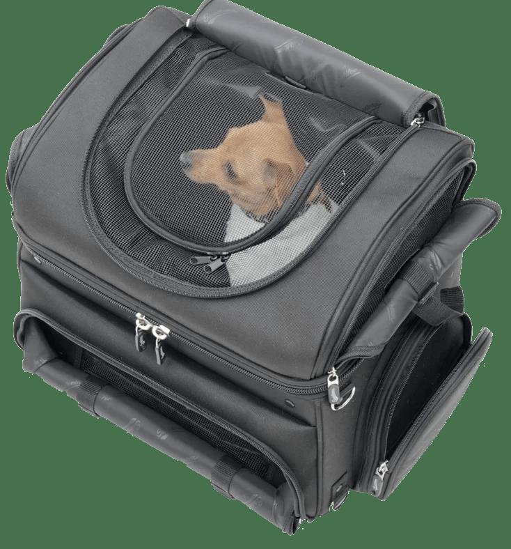 Saddlemen Pet Voyager