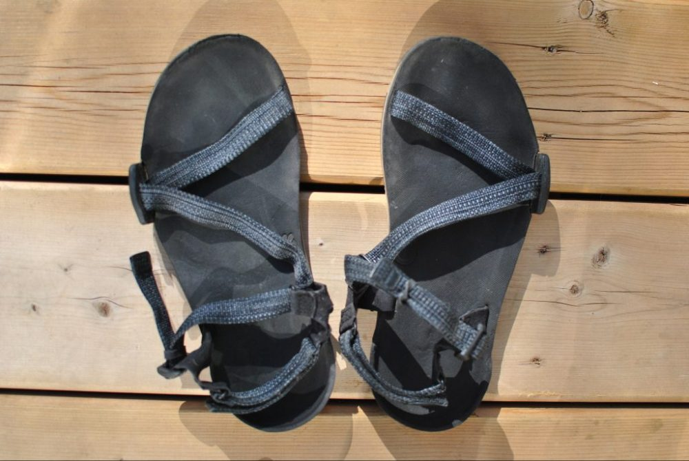 4a3529974d8 Xero Shoes Z-Trail  A Mixed Review - The Ridgeline Report
