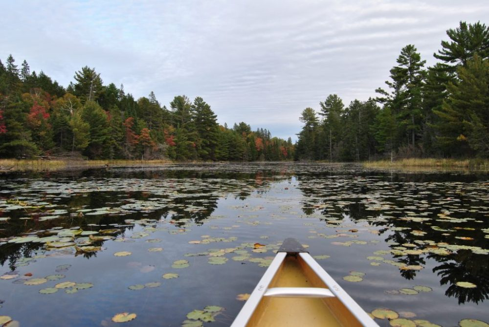 4 Day Canoe Trip in Killarney, Ontario - The Ridgeline Report