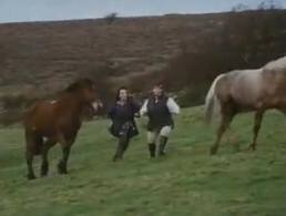 "Favorite Horse Video – ""French and Saunders – Ponies"""